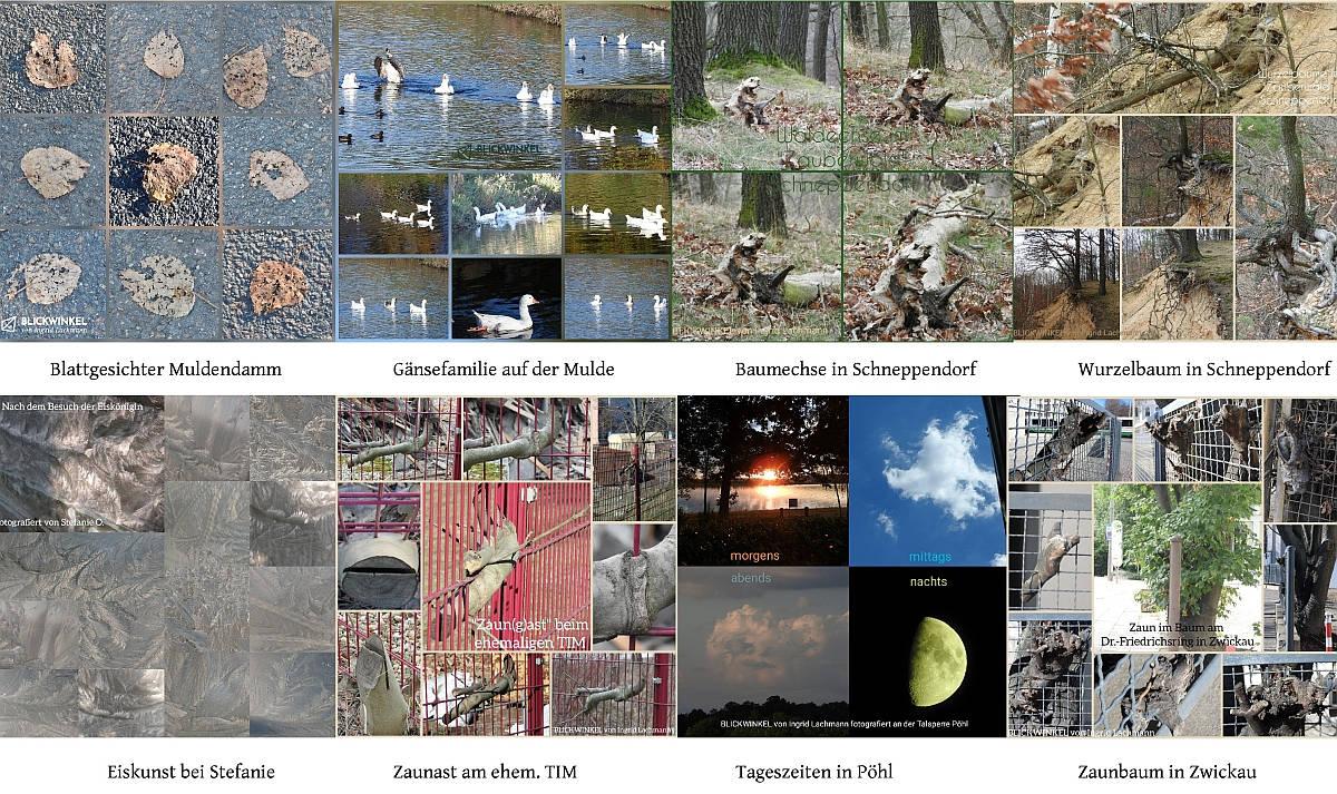 Fotokarten qudratisch Auflistung