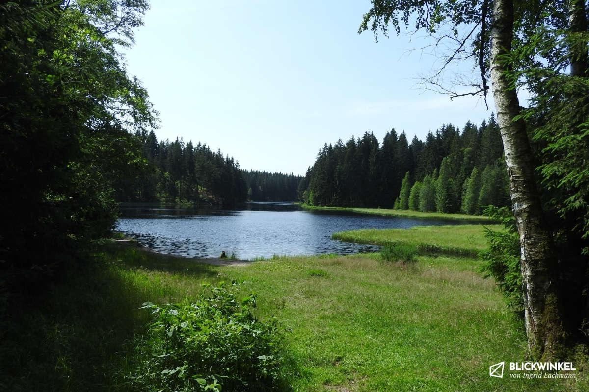 Waldbaden Vogtlandsee